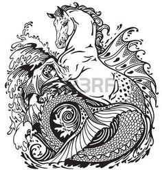 hippocampus or kelpie mythological sea-horse . Black and white illustration