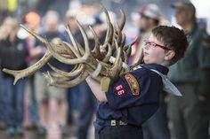 ElkFest is held each May in Jackson Hole, Wyoming.