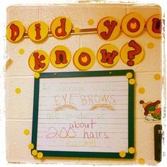 Getting kids into more non-fiction. I'll post a crazy fact a day, and if they can bring in a fact for me and show me where they read it (any non-fiction resource, print or digital) I'll put it up for the day with their name. I'm hopeful I can hook them! {image only}...what a great idea!!