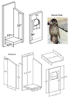 Bird House Plans 398639004516940726 - Barred Owl nestbox Source by QuilKingStudio