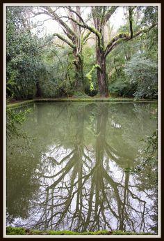 galicia - pazo
