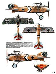 Albatros D.III (OAW) /Uffz. Fritz Liese /Jasta 50 /Feb. 1918 by Janusz Światłoń