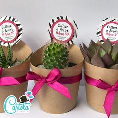Succulent Party Favors, Succulent Gifts, Flower Box Gift, Flower Boxes, Contemporary Wedding Decor, Small Flower Pots, Cactus Gifts, E Craft, Best Wedding Favors
