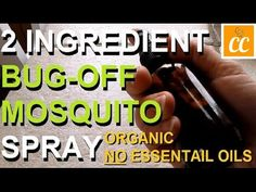 If you hate dealing with mosquitos, you'll want to see this video. Learn how to make the best homemade mosquito repellent. Home Health Remedies, Natural Health Remedies, Natural Cures, Best Mosquito Repellent, Mosquito Spray, Insect Repellent, Insecticide, Def Not, Natural Cough Remedies