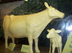 The Ohio State Fair - Cow sculptured from real butter