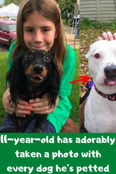 """11-year-old Gideon is a dog-lover who started a website called """"I've Pet That Dog"""" in 2016. It's dedicated to – you guessed it – all the dogs he's pet over the last few years. Now, he's got a following of over 50k on Instagram and more than 320k on Twitter!"""