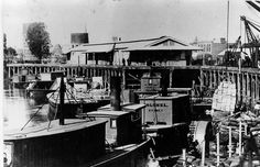 A very busy Echuca Wharf in the early Murray River, Paddle Boat, Historical Photos, Boats, Australia, History, Country, Live, Historical Pictures