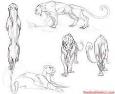 Resultado de imagen de panther drawings sketches