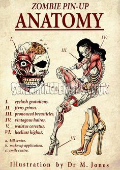Zombie Pin-up Anatomy Art print by Marcus Jones 11.5 x 8 approx. $10.00, via Etsy.