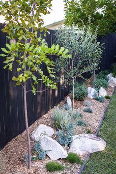 My Backyard Makeover — Adore Home Magazine Australian Garden Design, Australian Native Garden, Garden Edging, Garden Beds, Terrace Garden, Back Gardens, Outdoor Gardens, Backyard Plants, Backyard Garden Ideas