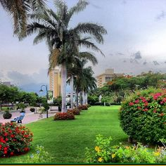 Emancipation Park -Kingston Stress Pictures, Beautiful Islands, Beautiful Places, Jamaica History, Jamaica Vacation, Ocho Rios, West Indies, Island Life, Caribbean