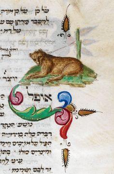 Lioness--Festival prayer book, Italian rite OriginItaly Date3rd quarter of the 15th century LanguageHebrew