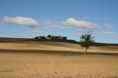 Le Crete Senesi - Bicipedi in Toscana