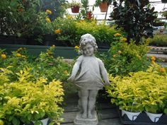 We Offer A Nice Selection Of Concrete And Ornamental Fixtures For Your Garden Riverbend Nurseries
