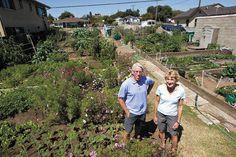 Linda and Darrell Voth in their community garden in Grover Beach.