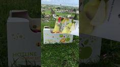 Früchtebox Express Paper Shopping Bag