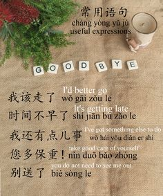 If saying zai jian is boring, learn 18 other ways to say the goodbye in Chinese. Chinese goodbye is not that difficult as you think. Chinese Sentences, Chinese Phrases, Chinese Words, Chinese Language, Korean Language, Dual Language, Japanese Language, Chinese Lessons, French Lessons