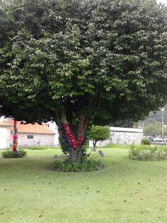 O crochet sai á rua Vila Nova de Cerveira 2014