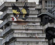 RUSL L♥L italian bird