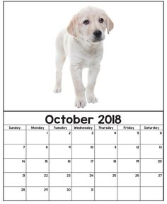 Cute Wall Calendar October 2018 Printable Calendar 2020, Calendar 2018, Organize Your Life, Menu Planning, Layout Design, Free Printables, Puppies, Organization, Homeschooling
