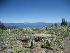 Lake Tahoe as seen from the top of Lakeview Chair at Alpine Meadows.