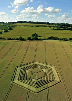 Crop circle (or should I call it a crop cube?) in Hampshire, UK (2010)