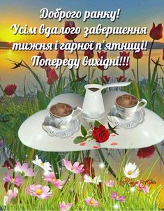 Good Morning, Words, Plants, Live, Bom Dia, Buen Dia, Bonjour, Flora, Plant
