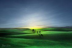 green carpet... - null