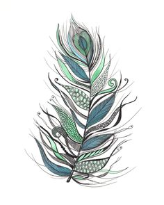 Feather Drawing | The Little Leaf