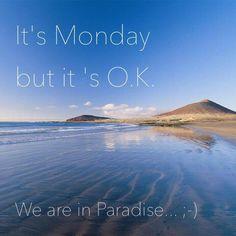 webtenerife.com El Medano, Tenerife. Es lunes... pero esta OK porque estamos en el paraíso Tenerife ;-). // It's Monday but it's OK because we are in Paradise, Tenerife ;-). // Es ist Montag, aber es ist OK, denn wir sind ja im Paradies Teneriffa ;-).