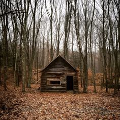Abandoned cabin in Dover Plains, New York  Contributed by Jon...