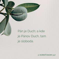 """2 KORINTIËRS """"Die Here"""" beteken hier """"die Gees"""", en waar die Gees van die Here is, is daar vryheid. Youversion Bible, Jesus Culture, In God We Trust, Word Of God, Gods Love, Bible Verses, Freedom, Lord, Faith"""