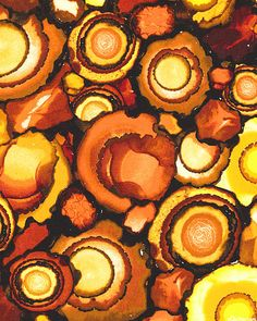 Nature's Treasures - Agate Splashes - Amber