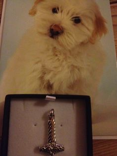 RIP 5. Marts 2015. Æret være Arthurs minde. I found a pic I took recently of a birthday card with a dog just like Arthur, and the present for good luck (Hammer of Thor), which should have been a nice birthday gift to another loved one I also finally lost recently…