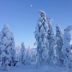 Levi, Finnish Lapland, moonrise #levi #lapland #finland #skiing #snow #winter