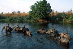 Garamba National Park, Democratic Republic of the Congo (UNESCO World Heritage Site)