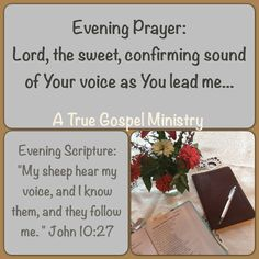 "Evening Scripture:    ""My sheep hear my voice, and I know them, and they follow me. "" John 10:27  Evening Prayer: Lord, the sweet, confirming sound of Your voice as You lead me... #eveningscripture #eveningprayer #atruegospelministry #scripturequote #biblequote #quote #seekgod #godsword #godislove #gospel #jesus #jesussaves #teamjesus #LHBK #youthministry #preach #testify #pray #rollin4Christ"