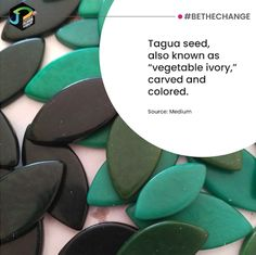 TAGUA is considered the new Eco-friendly, Vegetable IVORY and is known for its strength, color, beauty and resilient qualities. Do you think it can be a great replacement for EMERALD?   .  .  #JEWELRYDESIGNCOURSE #ETHICALDESIGN #SUSTAINABLEDESIGN  #IAMCHANGE #BETHECHANGE #ECOFRIENDLY #SUPPORT #CHANGE #INNOVATE #JDINSTITUTEOFFASHIONTECHNOLOGYINDIA #JDINSTITUTE #JDADA #JDANNUALDESIGNINGAWARDS #JDADA2018 #JEWELRYDESIGN