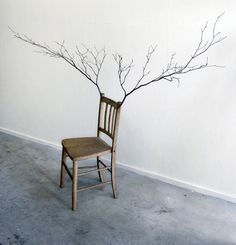http://deco-design.biz/chaise-design-tree-of-chai-art-kado-bunpei/7482/