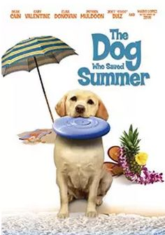 dvd The Dog Who Saved Summer