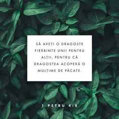 1 Peter Most important of all, continue to show deep love for each other, for love covers a multitude of sins. Bible Verses Quotes, Bible Scriptures, 1 Peter 4 8, La Sainte Bible, Bible Plan, Love Cover, Deep Love, Verse Of The Day, Trust God