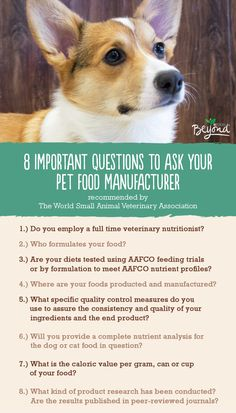 The World Small Veterinary Association recommends asking a few key questions about your pet food. What answers does your pet food provide?