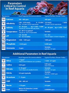 Today we are going to share which water parameters you need to test for in a fish-only or reef aquarium, explain how these parameters effect fish and coral as well as provide tips on how to choose the right test kits for your tank. Some hobbyists claim they can tell how good or bad their …