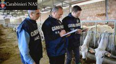 LA NUOVA POLITICA AGRICOLA COMUNITARIA 2014-2020: PARTE IL REGISTRO UNICO DEI CONTROLLI A IMPRESE AG...
