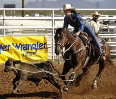 rodeo Cowboy Horse, Cowboy And Cowgirl, Team Roper, Rodeo Time, Rodeo Cowboys, Western Riding, Bull Riding, Sport, Animals