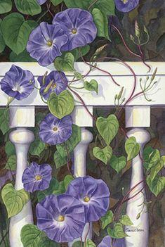 Morning's Glory    Original fine art watercolor paintingof purple morning glories twining around a porch rail by Rose Ganucheau.