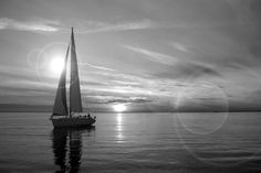 black and white and green scenic poster | Black and White Sailboat Canvas Wall Art, Canvas Print - iCanvasART ...
