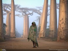10 Best National Geographic Photos Of All Time