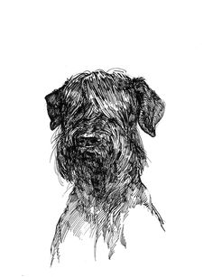 Portraits of Dogs on Behance