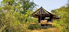 Game Lodge Tent